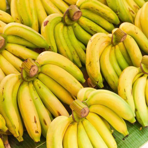GFL-Gallery-Banana-19